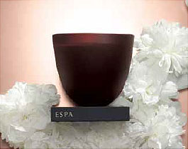 ESPA Winter Spice